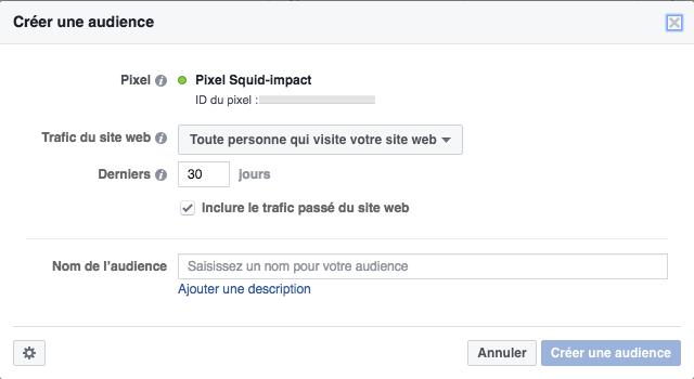 Pixel Facebook audience