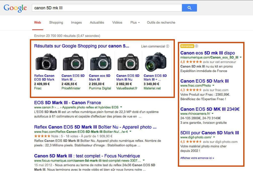 Serp, résultat recherche Google, résultat naturel et adwords